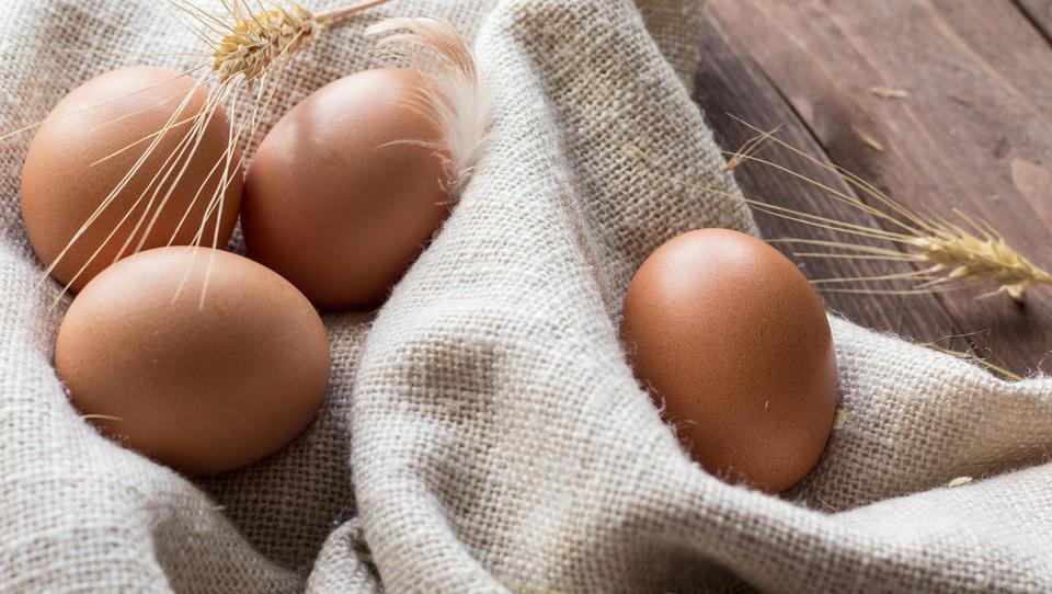 S fipronilom okužena jajca zaobšla Slovenijo