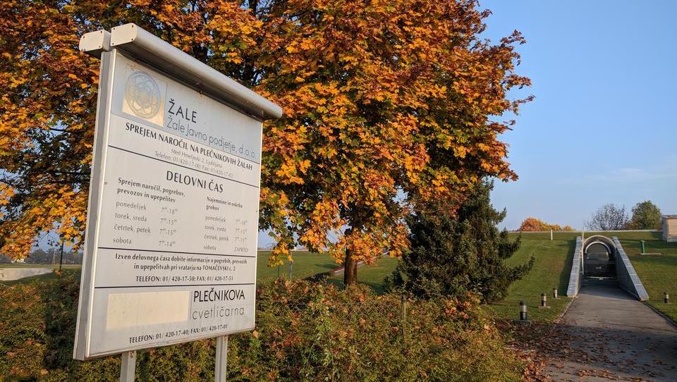 Uredba, zaradi katere slovenski zarodki končajo na smetiščih v tujini