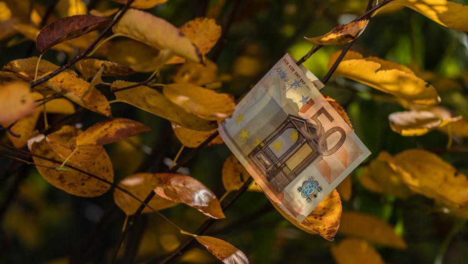 TOP razpisi tega tedna: štipendijski sklad, občine