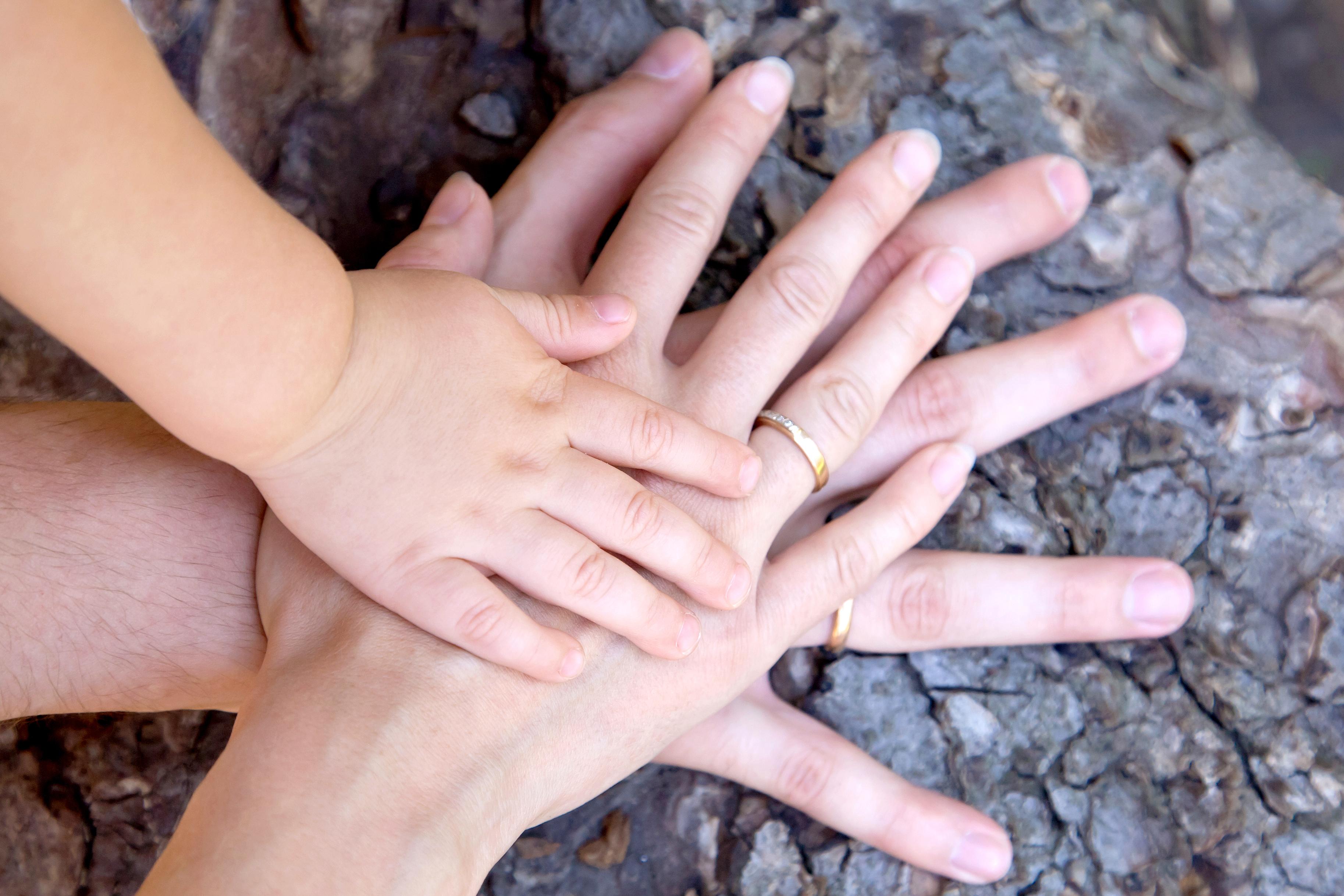 Družinski člani se pogosto niti ne zavedajo tveganj, ki jih prepletenost družinskih in lastniških odnosov prinaša