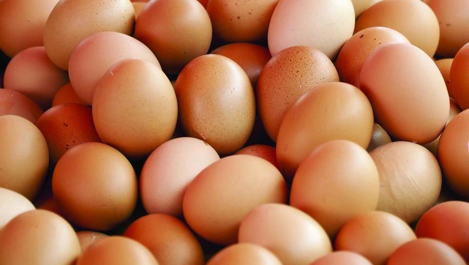 Popravek: Pečjak uporablja jajca brez GSO