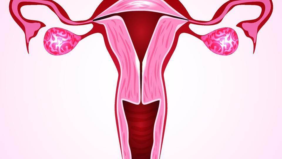 Z novim presejalnim programom do 22 odstotkov manj raka materničnega vratu?