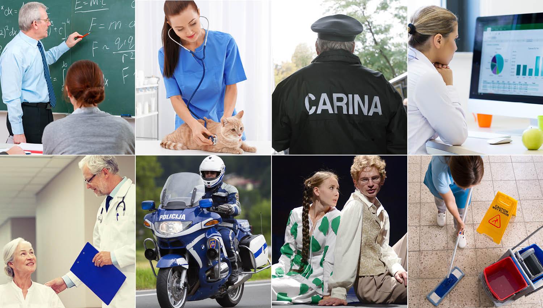 Poglejte, koliko zaslužijo učitelj, zdravnik, carinik, policist, knjižničar, igralec …