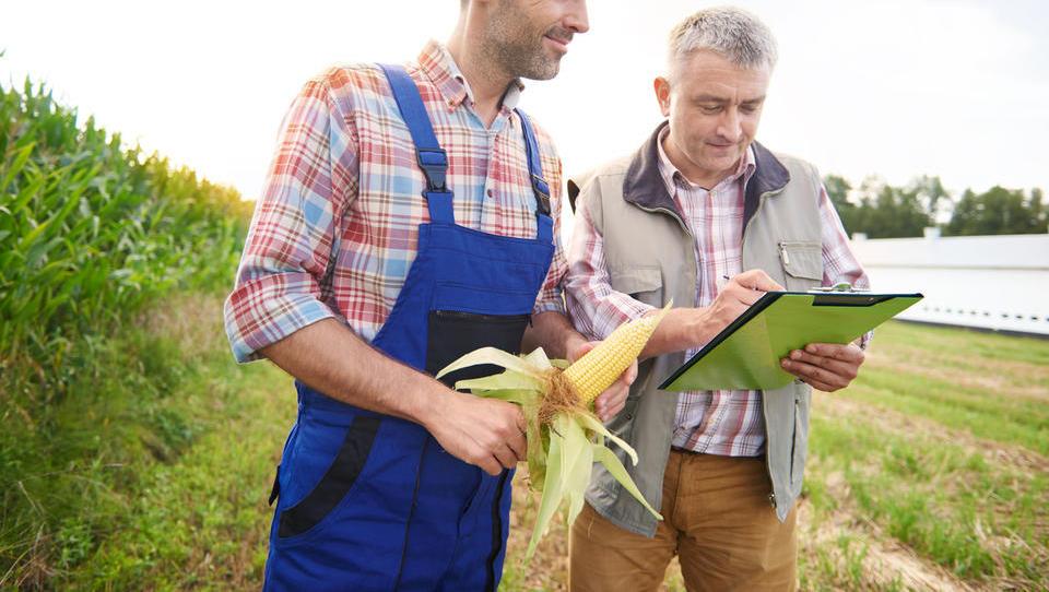 Ptujski kmetje predlagajo 5 ukrepov za zmanjšanje škode zaradi vremenskih ujm