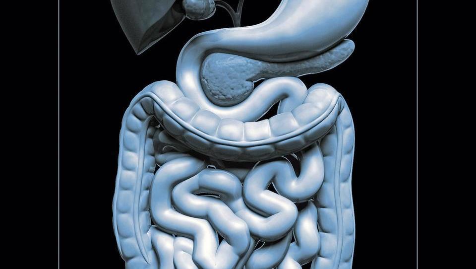 Dve raziskavi pomembni za zgodnje ugotavljanje raka debelega črevesja