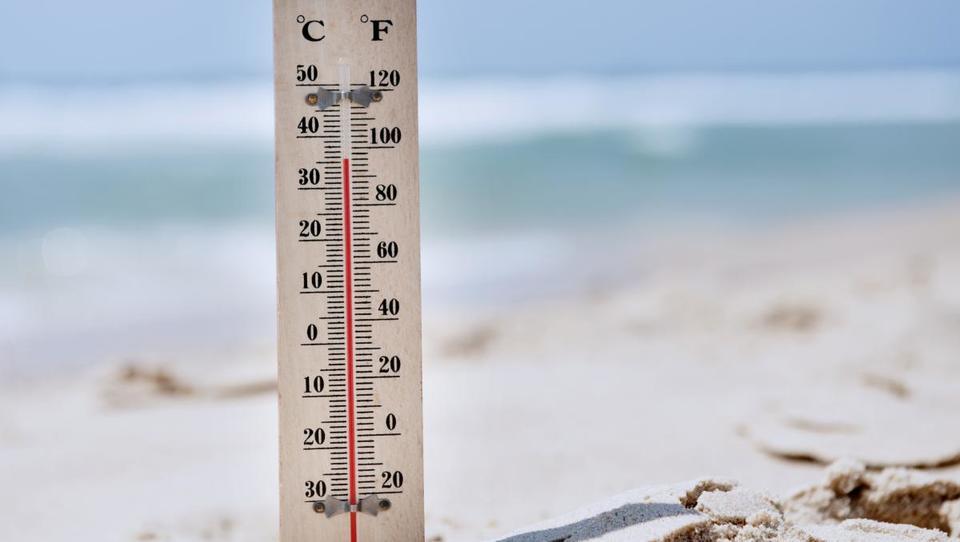 Znanstveniki potrdili, da je bilo lansko leto najtoplejše doslej